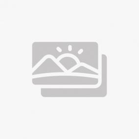 ASSIETTE 24 CM GRIS MARBLE